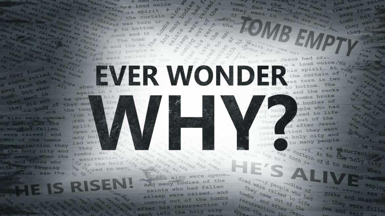 Neue Predigtserie im Herbst: Warum?